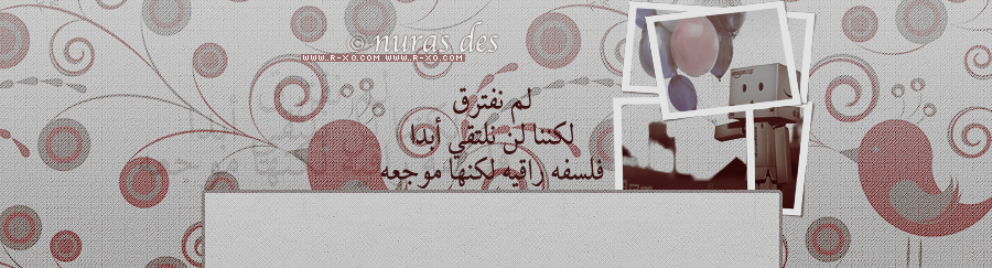 ������ ����� 2014 ������ ���� r-x01359866980492.pn